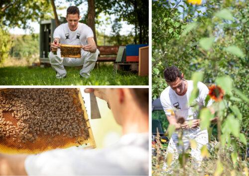 Butz-und-Neumair-Aufzugbau-Muenchen-Bienen01